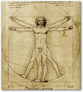 Renascimento - Homem Vitruviano de Leonardo da Vinci